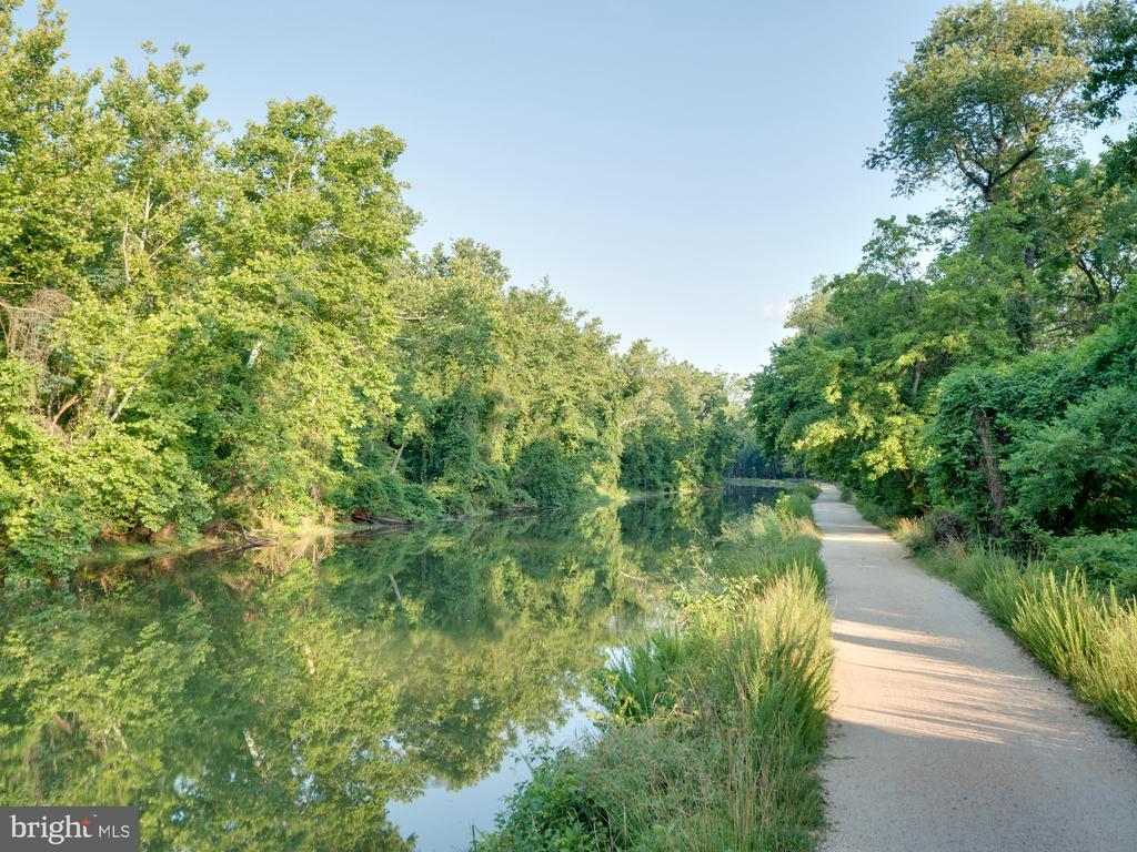 The path on the canal ever so popular & so close - 4651 35TH ST N, ARLINGTON