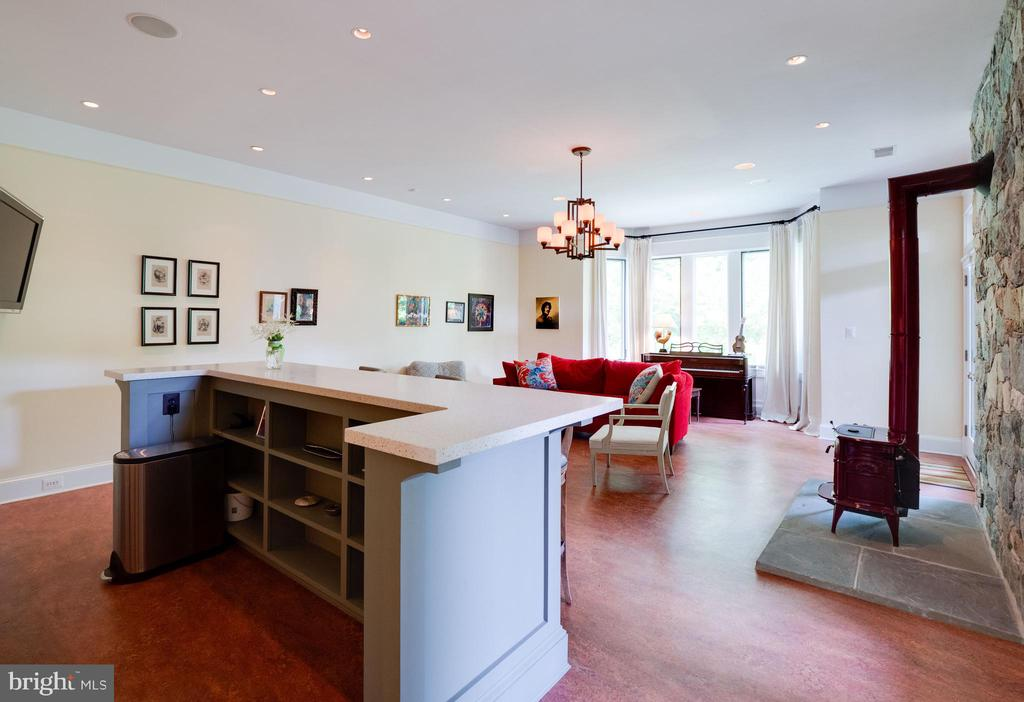 One more view of the lower level family room - 4651 35TH ST N, ARLINGTON
