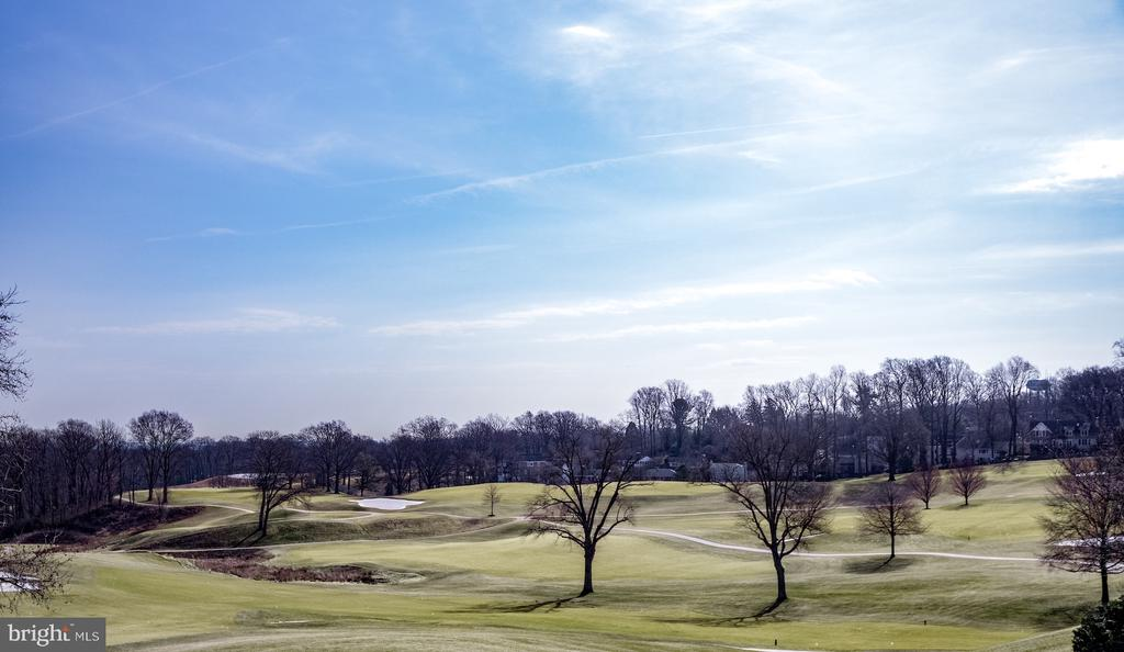 View of the golf course - 4651 35TH ST N, ARLINGTON
