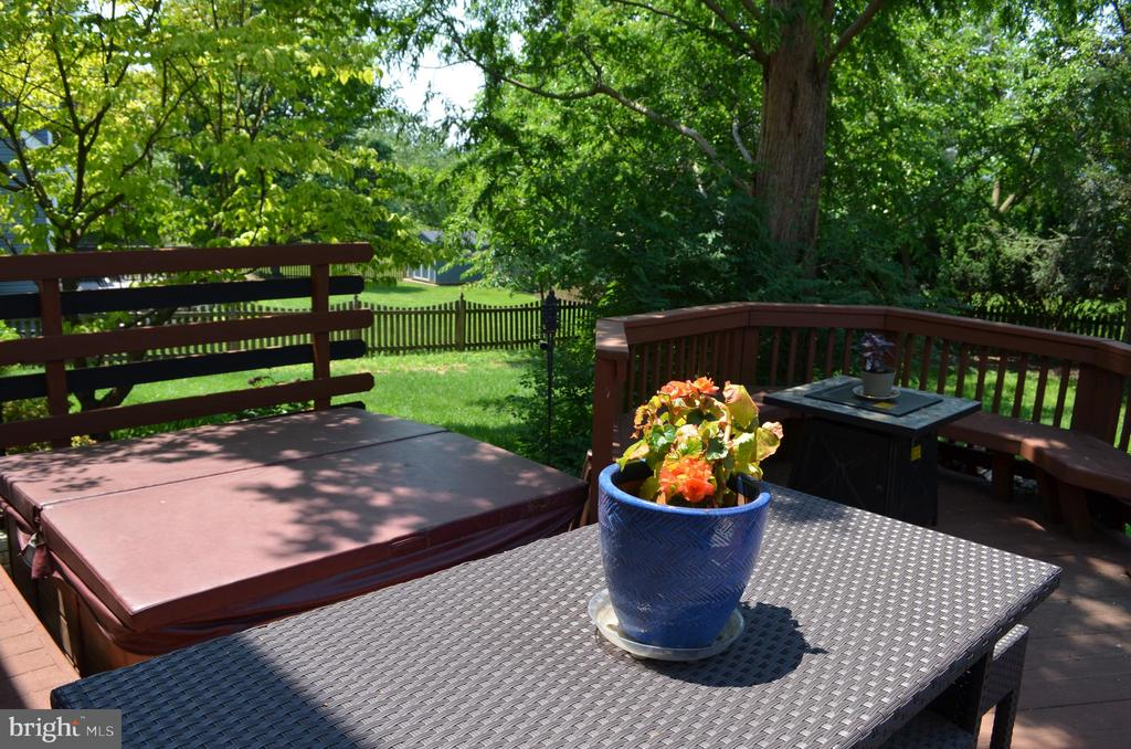 Mature trees - 6304 SPRING FOREST RD, FREDERICK