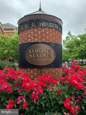 9020 LORTON STATION BLVD #1-114