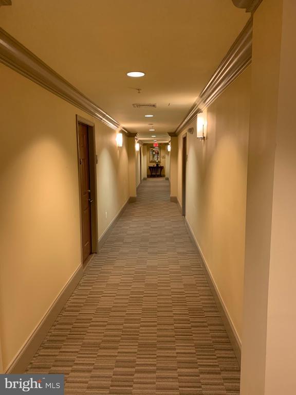 Interior hallway to unit - 9020 LORTON STATION BLVD #1-114, LORTON