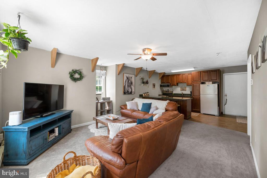 Apartment living room - 12645 OLD FREDERICK RD, SYKESVILLE