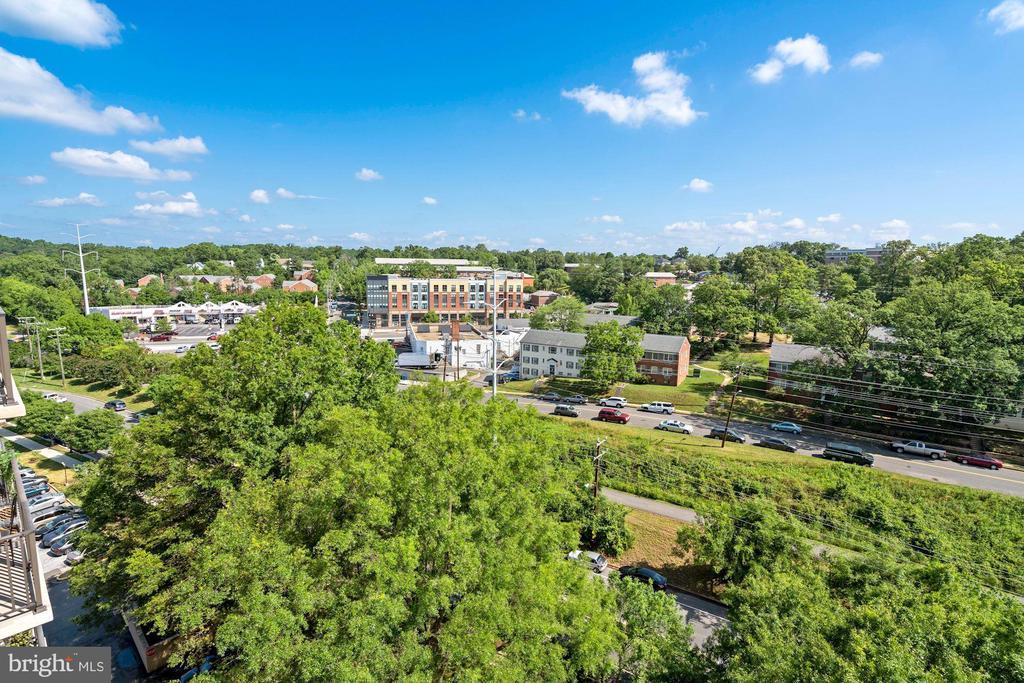 Treetop views - 4600 S FOUR MILE RUN DR #1007, ARLINGTON