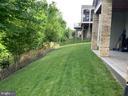 The rear yard-pristine.. - 17037 SILVER ARROW DR, DUMFRIES