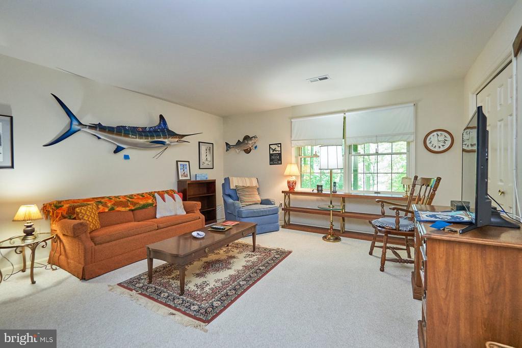 Lower level bedroom - 10824 HENDERSON RD, FAIRFAX STATION