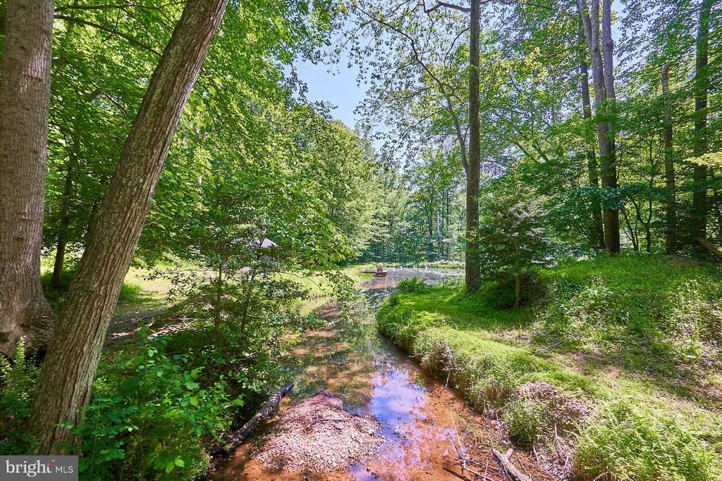 Stream behind the property - 10824 HENDERSON RD, FAIRFAX STATION