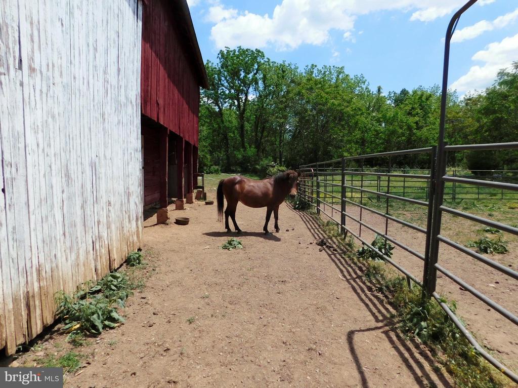 Horsey Barn Overhang Area. - 420 RUSSELL RD, BERRYVILLE