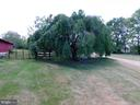 Beautiful Weeping Tree - 420 RUSSELL RD, BERRYVILLE