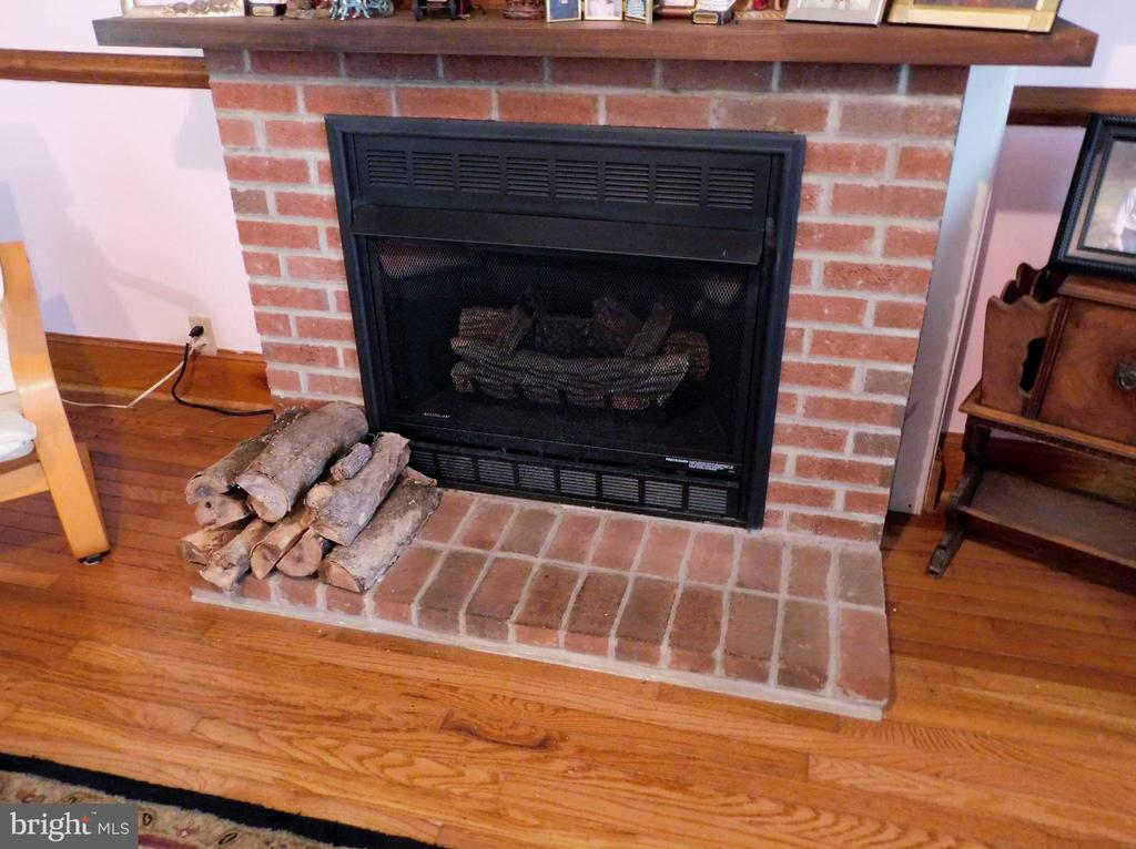 Brick Gas Fireplace - 420 RUSSELL RD, BERRYVILLE
