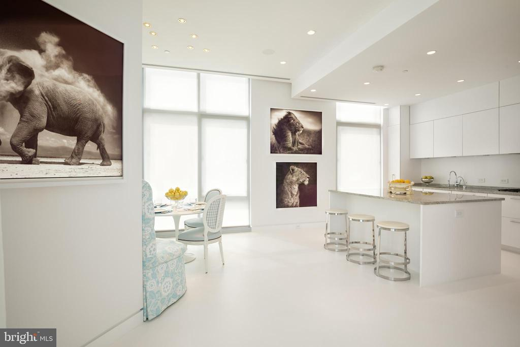 The sleek kitchen is flooded with natural light - 1177 22ND ST NW #9G, WASHINGTON