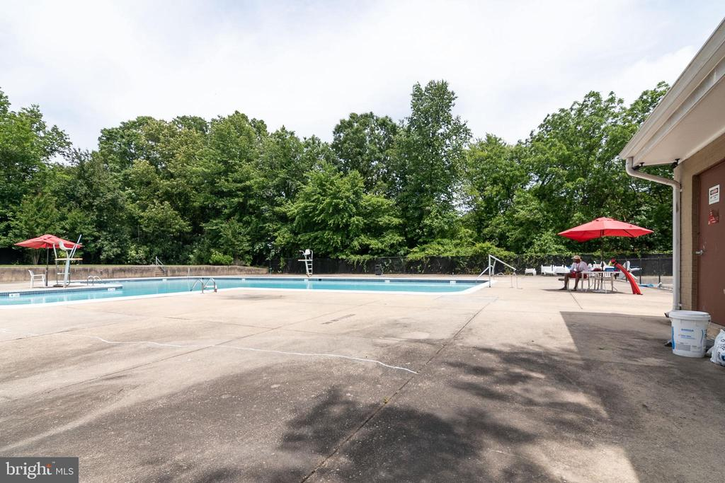Community Pool - 7333 NEW HAMPSHIRE AVE #317, TAKOMA PARK