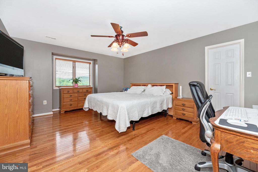 Master with a view - 7319 EYLERS VALLEY FLINT RD, THURMONT