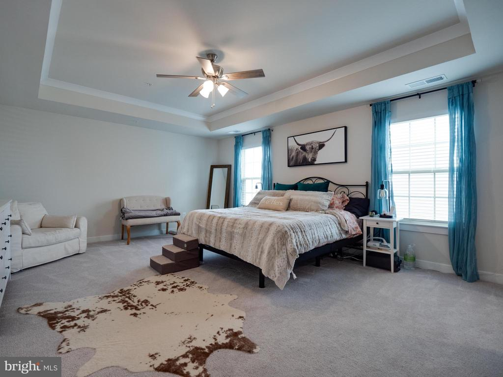 Primary Bedroom - 6877 WOODRIDGE RD, NEW MARKET