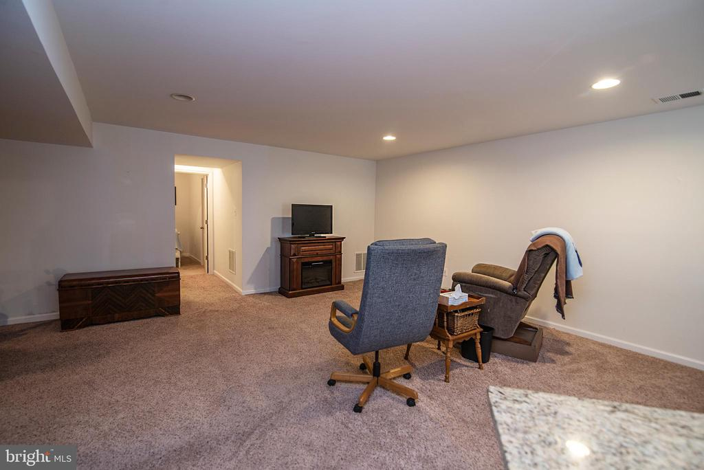 Full loiving space in basement - 53 CARRIAGE HILL DR, FREDERICKSBURG