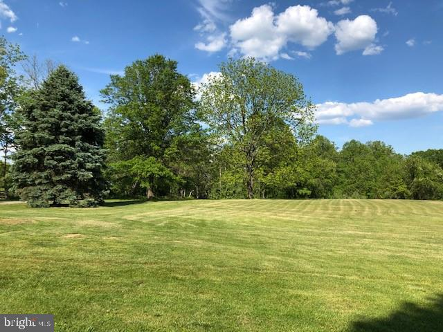 front yard - 20707 ST LOUIS RD, PURCELLVILLE
