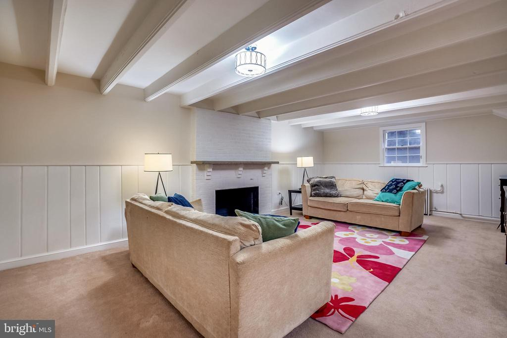 Huge recreation room with fireplace - 900 MCCENEY AVE, SILVER SPRING