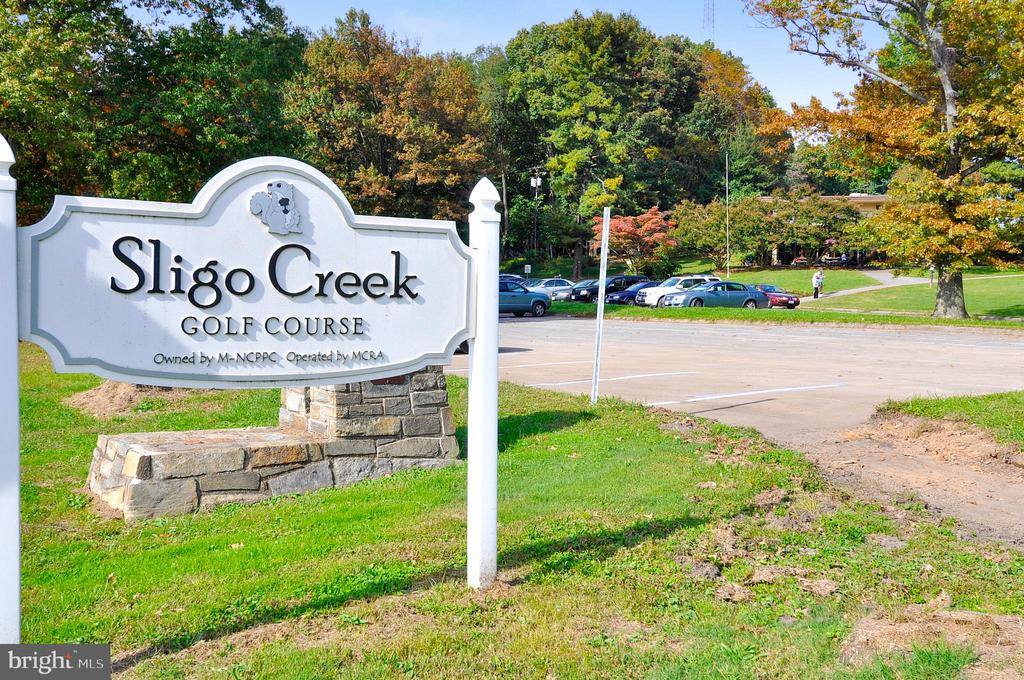 Local golf course - 900 MCCENEY AVE, SILVER SPRING