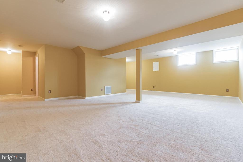 Tons of space in the lower level rec room - 133 NORTHAMPTON BLVD, STAFFORD