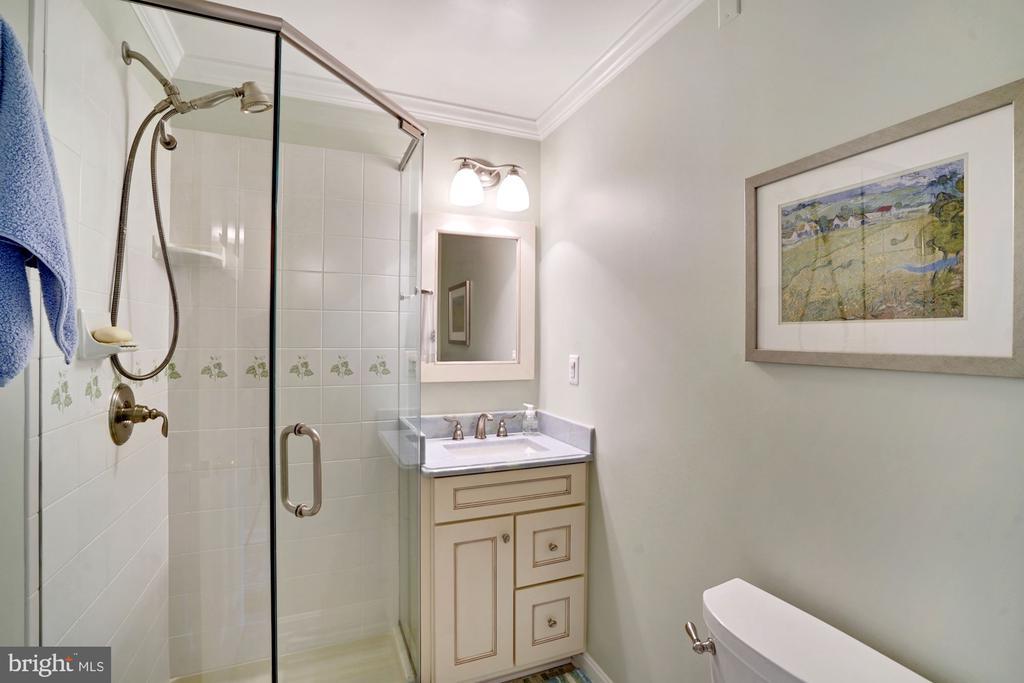 Main Level Bathroom 2 - 10910 BELMONT BLVD, LORTON