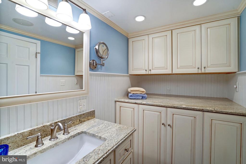 Lower Level Bathroom 3 - 10910 BELMONT BLVD, LORTON