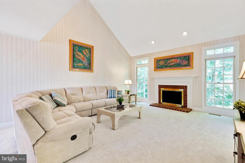 Large Family Room with Vaulted Ceiling - 4346 MULCASTER TER, DUMFRIES