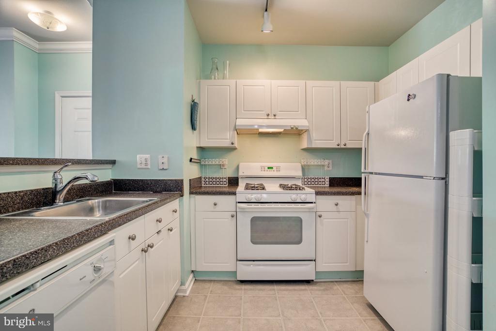 Kitchen - 11381 ARISTOTLE DR #10-210, FAIRFAX