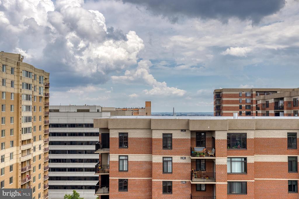 View from unit - 1276 N WAYNE ST #PH07, ARLINGTON