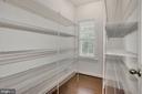HUGE walk-in pantry - 37 DONS WAY, STAFFORD