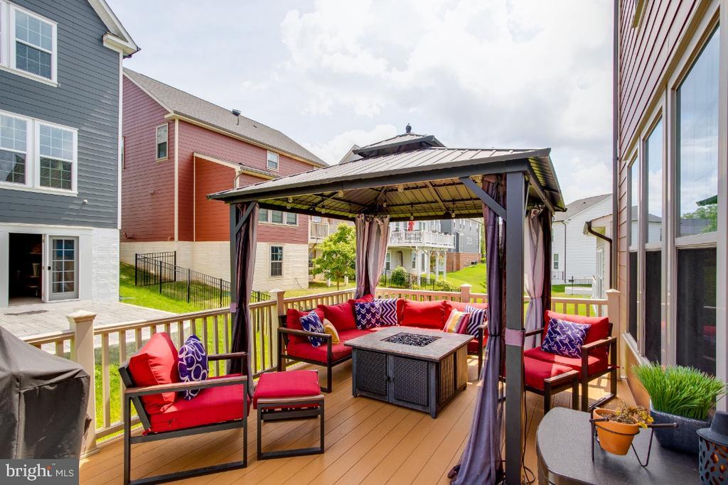 Maintenance free Trex deck off kitchen - 16965 TAKEAWAY LN, DUMFRIES