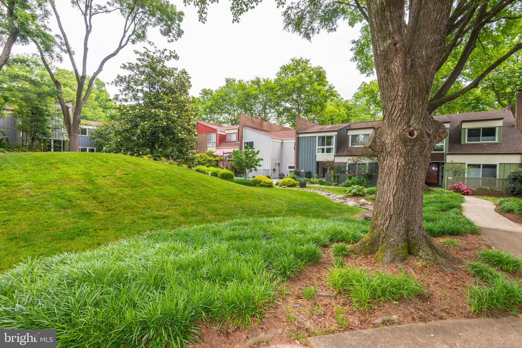 Beautiful Common Area in front of house - 11568 LINKS DR, RESTON