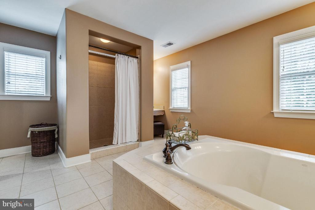Owners Suite Bath Soaking Tub & Separate Shower - 41873 REDGATE WAY, ASHBURN