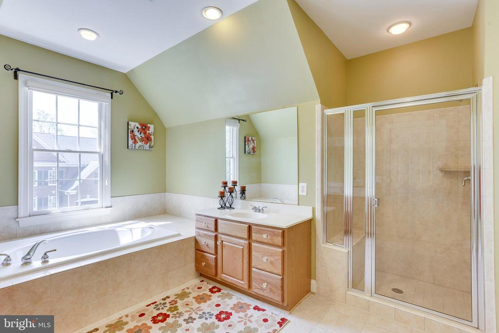 Walk-in shower and spa tub, oh my! - 4525 MOSSER MILL CT, WOODBRIDGE