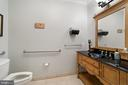 Maing Level Half Bathroom - 213 LOUDOUN ST SW, LEESBURG
