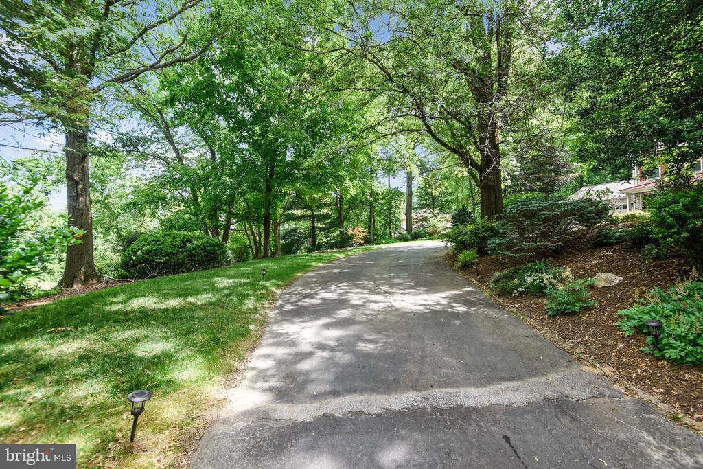Driveway leading to home - 1515 STUART RD, RESTON