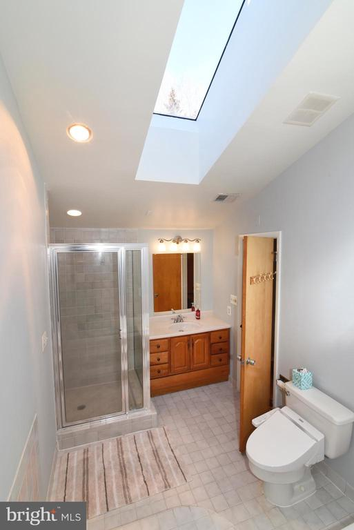 View of Skylight in Primary Bath - 1101 PEPPERTREE DR, GREAT FALLS