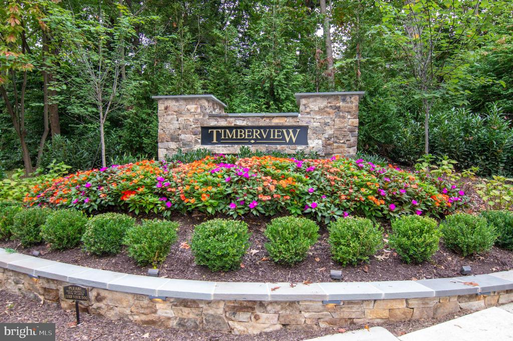Timberview - 11415 HOLLOW TIMBER WAY, RESTON
