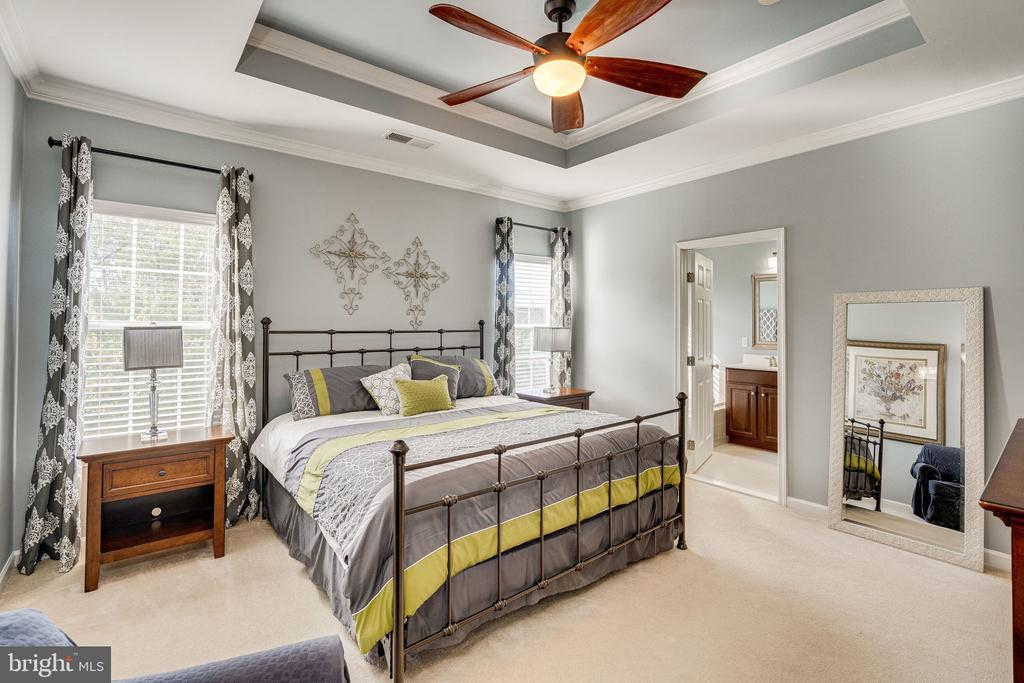 Bright, sunny primary bedroom - 42965 EDGEWATER ST, CHANTILLY