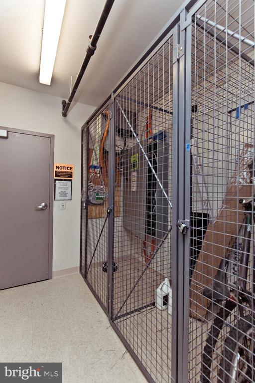 Additional Storage Unit - 1021 N GARFIELD ST #242, ARLINGTON