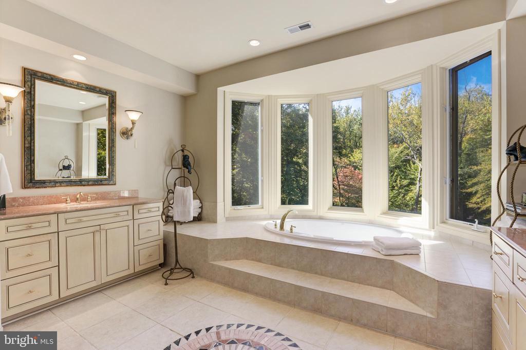 master bath -stunning views - 1342 POTOMAC SCHOOL RD, MCLEAN