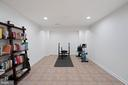 The media room- currently workout room - 17559 SPRING CRESS DR, DUMFRIES