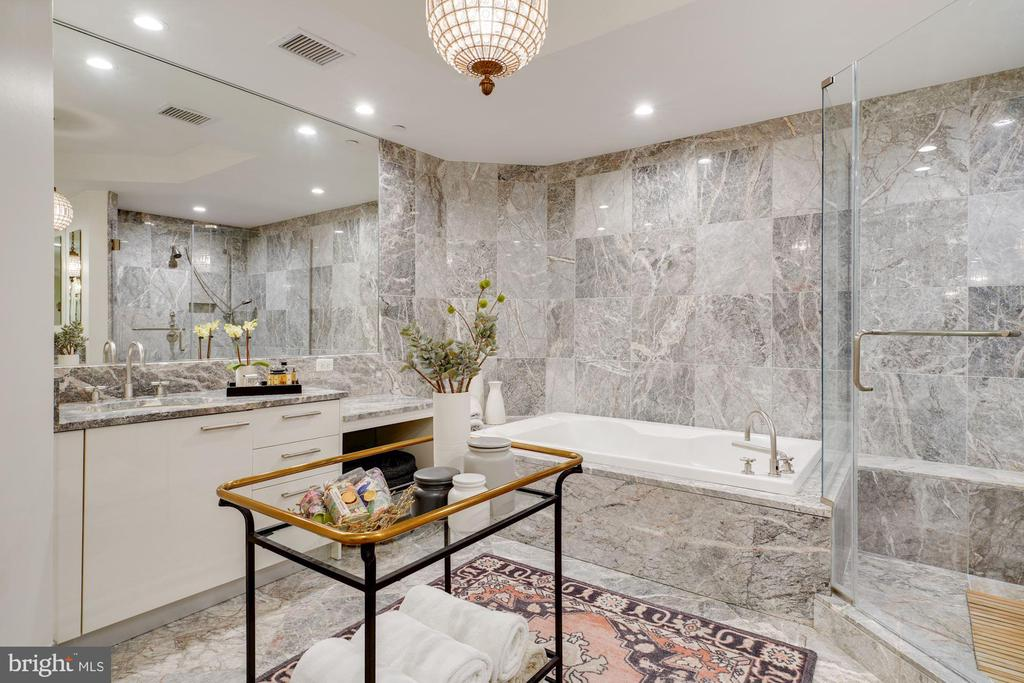 No, You're Not at the Spa; This is the Bathroom! - 1881 N NASH ST #307, ARLINGTON