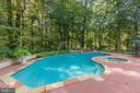 Ultra private pool and spa - 1342 POTOMAC SCHOOL RD, MCLEAN