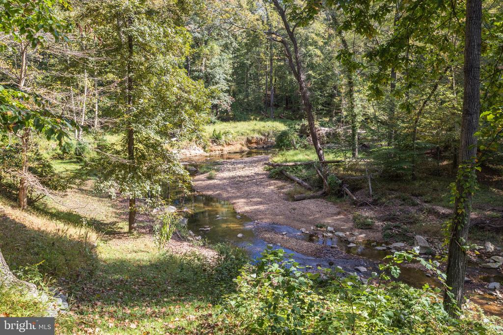 Amazing views of on-property Pimmit Run and woods - 1342 POTOMAC SCHOOL RD, MCLEAN