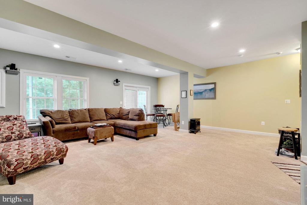 Spacious recreation room with outside door access. - 21260 PARK GROVE TER, ASHBURN