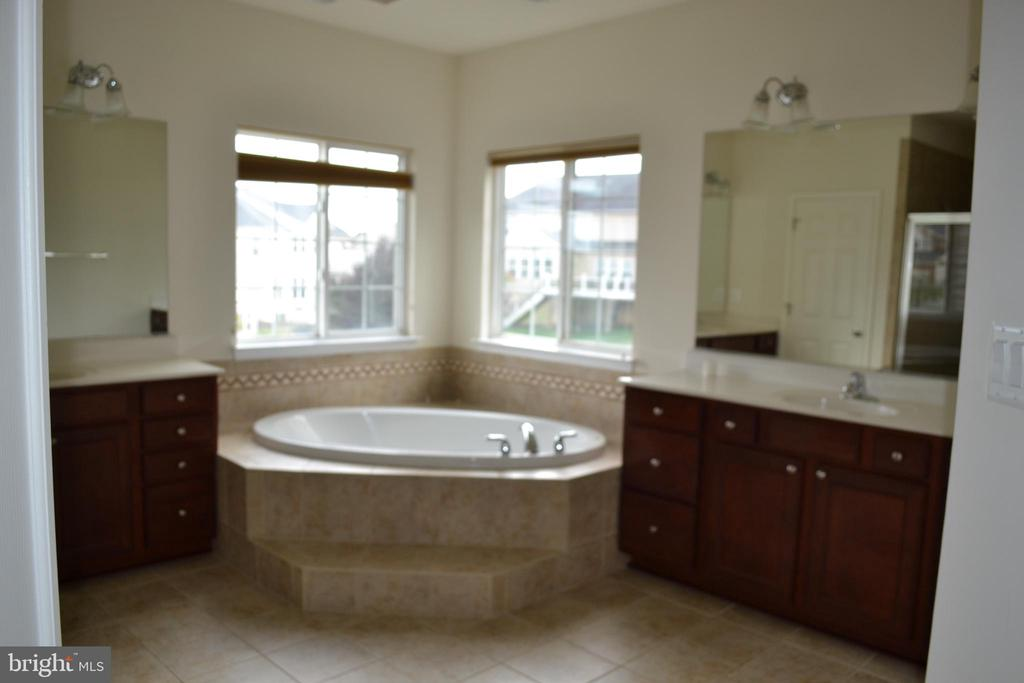 Master Batch with two vanities - 24104 STONE SPRINGS BLVD, STERLING