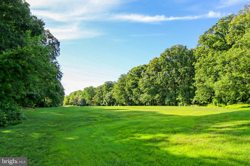 Just steps from Reston Nat'l Golf course - 2045 WETHERSFIELD CT, RESTON