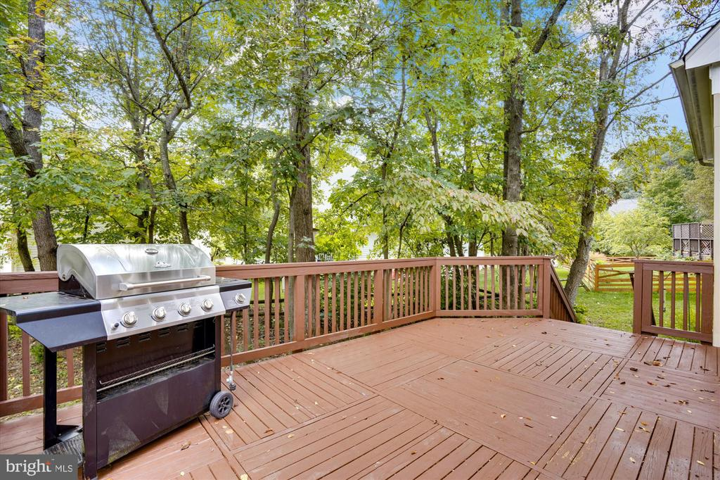 VIEW FROM DECK OF TREED LOT - 20672 PARKSIDE CIR, STERLING