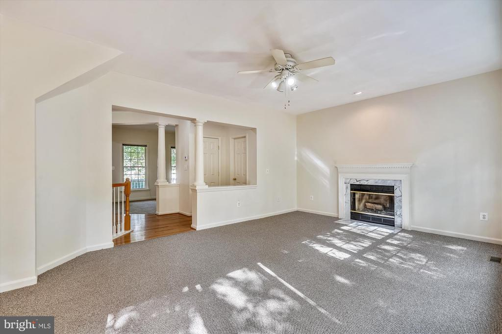 WOOD BURNING FIREPLACE AND CEILING FAN/LIGHT - 20672 PARKSIDE CIR, STERLING