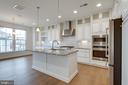Upgraded lighting package. - 42758 AUTUMN DAY TERRACE, ASHBURN